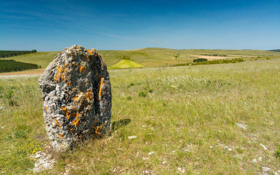 Les Menhirs sur le Causse Méjean